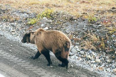 Alaska-Fall-2000