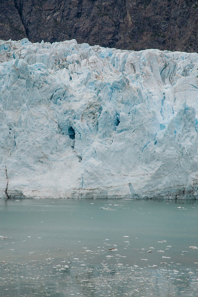 Glacier Bay - note the brown specs on the chunk of ice in the foreground...