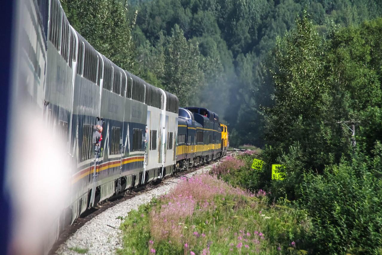 Rail Tour - Talkeetna to Denali