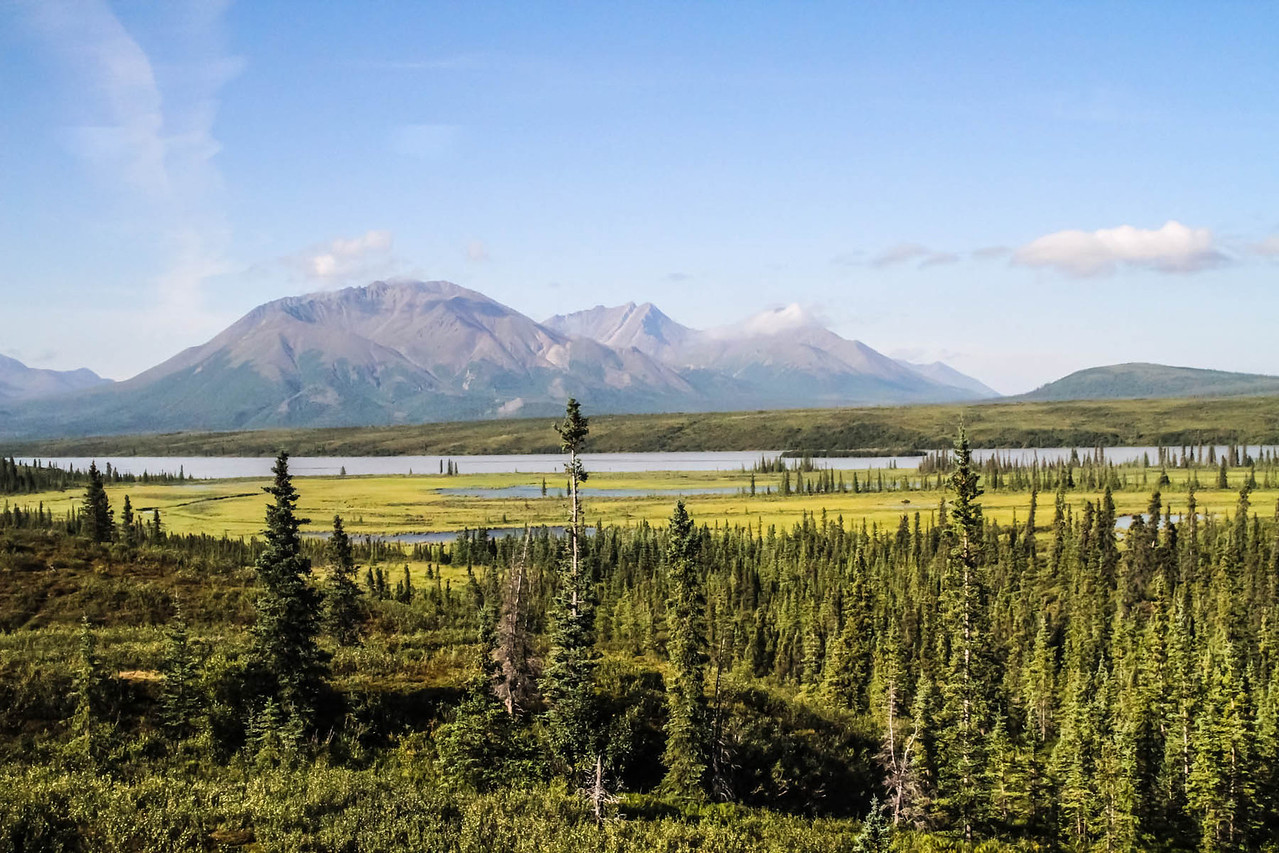 Denali Highway - Cantwell to Paxson