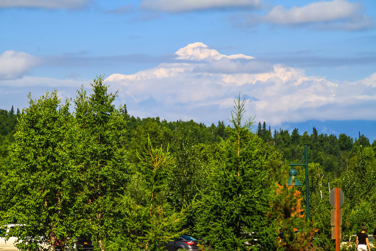 Mt. McKinley from Parks Hwy