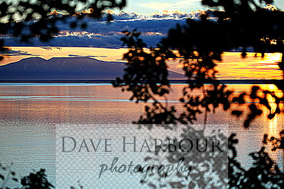 Alaska Midnight Sunset as Lady Susitna drifts off to sleep, Tree Frame (almost 11 p.m., 6-29-12)