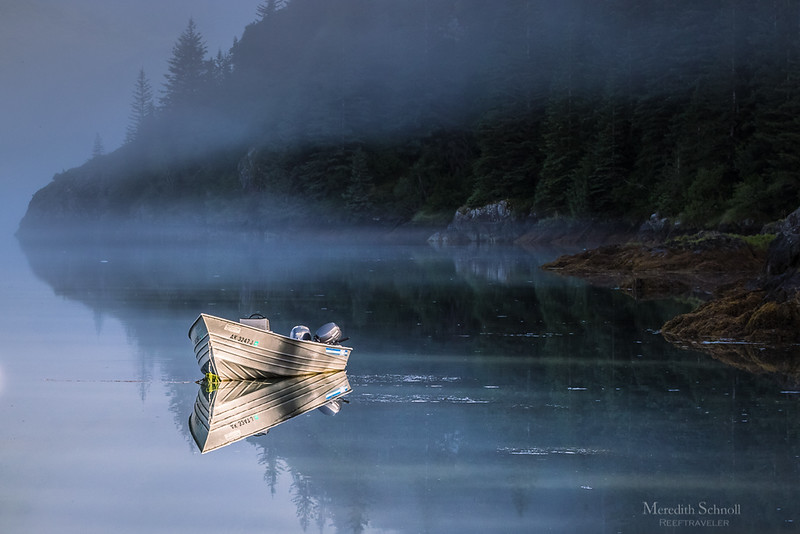 The Fog Lifts over Pedersen Lagoon in Kenai Fjords National Park