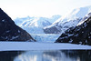 The Sawyer glacier at the top of the Tracy Arm.