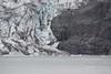 Edge of the Mendenhall glacier over the rocks.