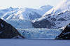 Docking at ice field in front of the Sawyer glacier.