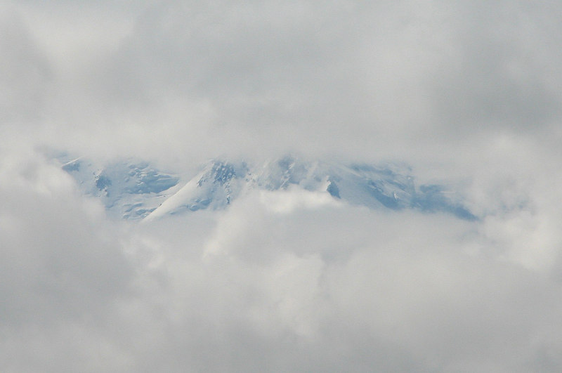 Yep, that's Denali, but just a small sliver about 2/3rds the way up the mountain, according to our driver. That's all folks. :(