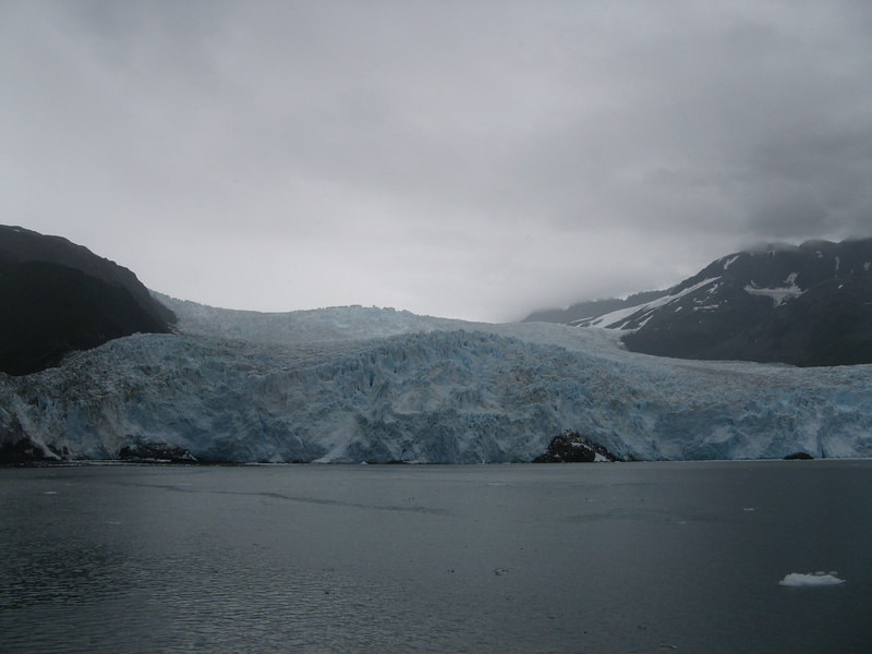 "We cruised right up to within a quarter mile of the Aialik glacier.  It was so cool to hear it ""calving"" - breaking apart and dropping into the water."