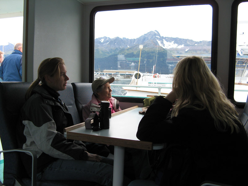 We took a cruise out of Seward to see the fjords and glaciers.