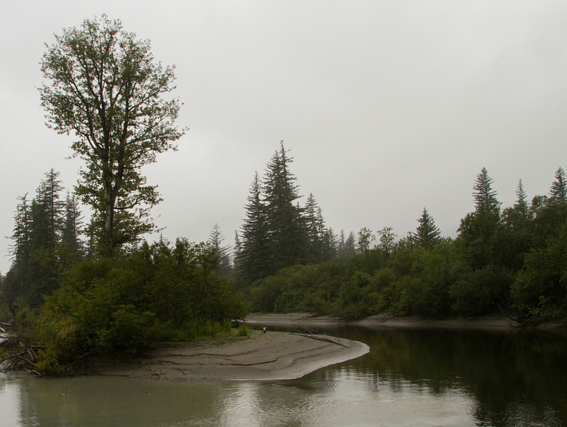 Stikine River delta region