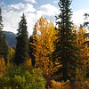 Alaska, September 2009