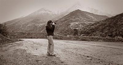 Tasha in Denali... Michael's photo...
