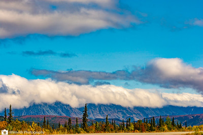 Alaska2018-8969
