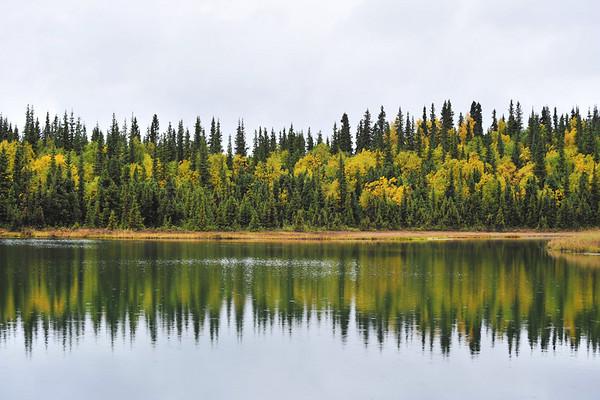 alaska fall - 2009