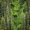Alaska_062012_Kondrath_1350
