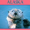 Sea Otter - Postcard - Sea otters have the densest fur in the animal kingdom, ranging from 250,000 to a million hairs per square inch, which insulates them and maintains warmth. Unlike other marine mammals, the sea otter does not have a layer of blubber (fat) to help keep it warm.<br /> Alaska Inside Passage Cruise - Seward, Alaska to Vancouver, Canada - Holland America Cruise Lines  - May 17-24, 1998