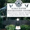 Alaska Raptor Rehab Center - Sitka, Alaska<br /> Alaska Inside Passage Cruise - Seward, Alaska to Vancouver, Canada - Holland America Cruise Lines  - May 17-24, 1998