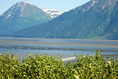 Bore Tide Turnagain Basin Alaska