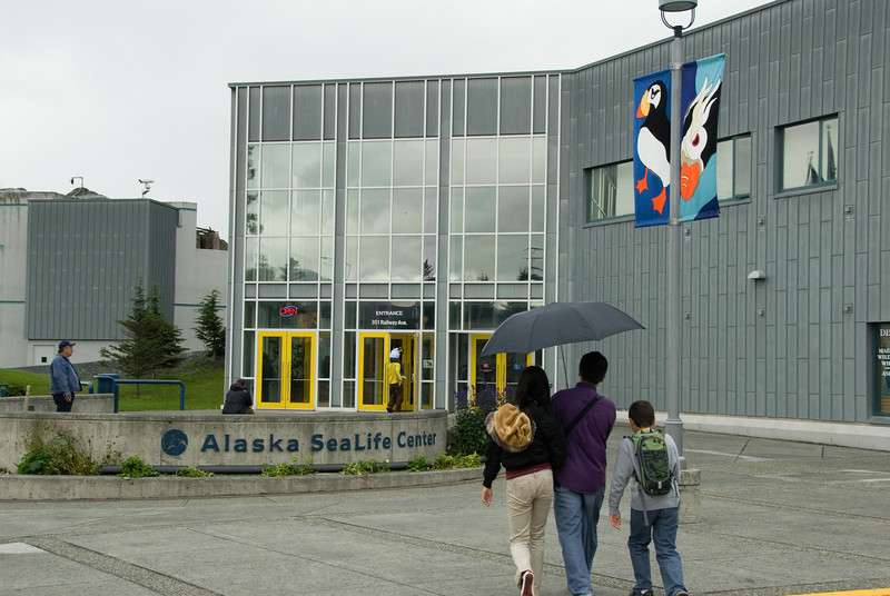 The very nice Alaska SeaLife Center.  This was rumored to be good, yet it still exceeded my expectations.  Fun was had by all.