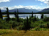 Another view from our patio at the Denali Lakeview Inn.