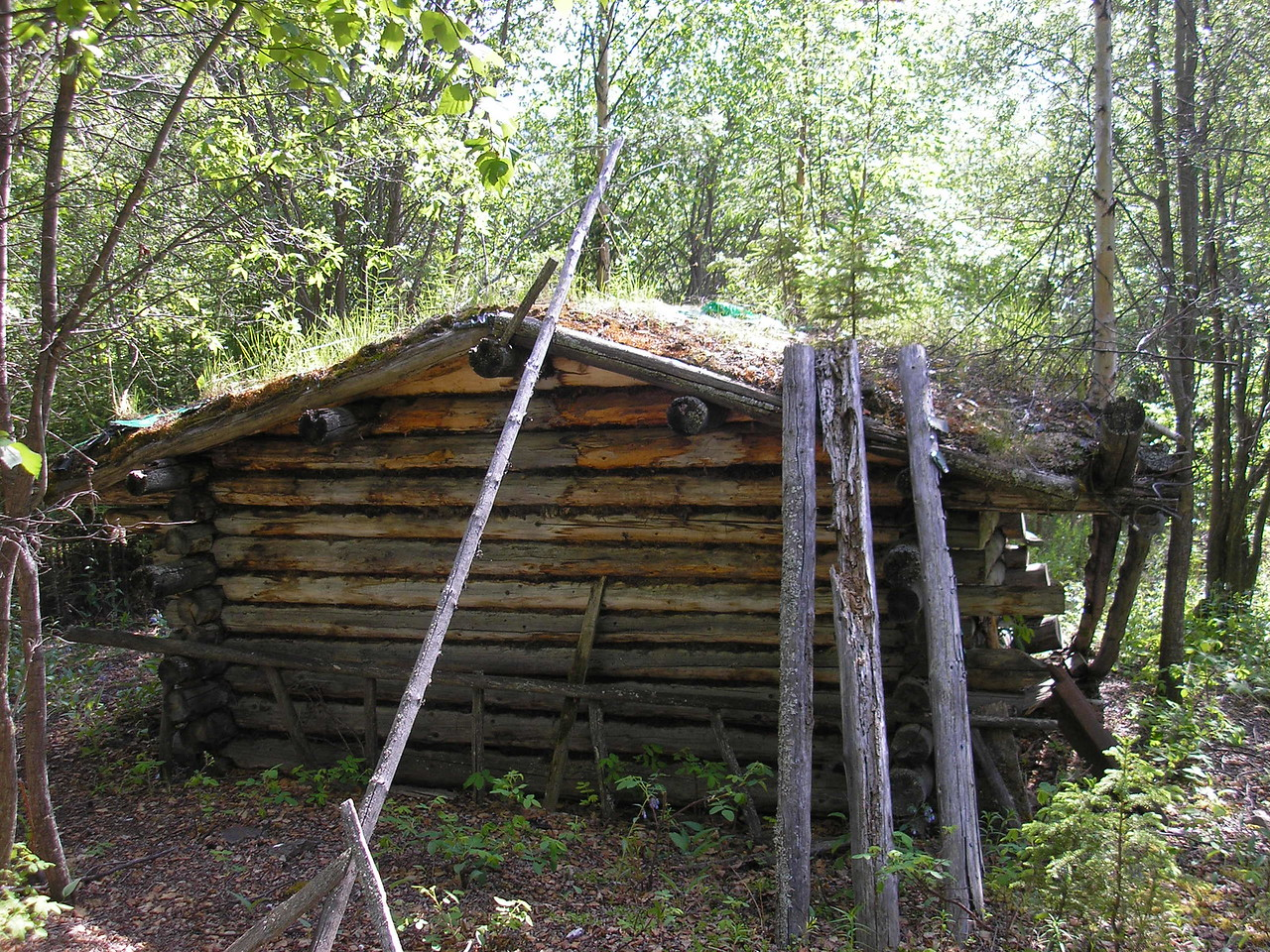 Thia is n okd trappers' cabin in the woods behind the Tetlin Visitor Center.  There were Americorps volunteers there building a trail to the cabin.