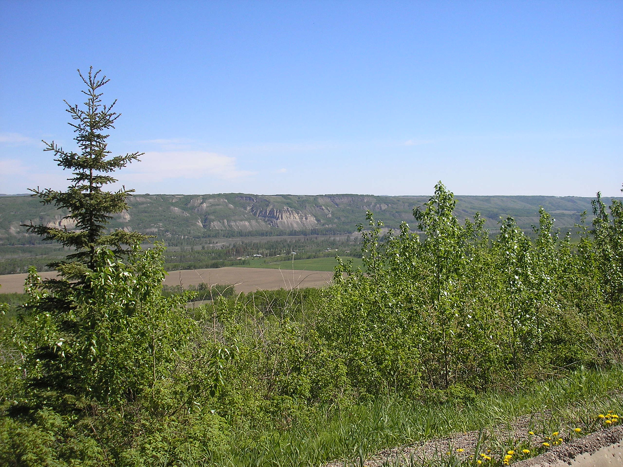 This is our view of the Peace River Valley.