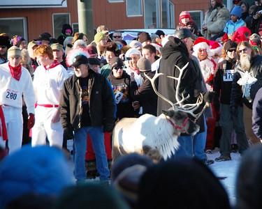Running of the Reindeer - Fur Rondy - Anchorage - Alaska