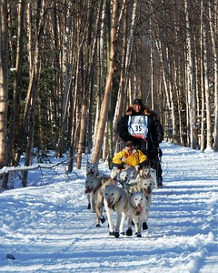 #35 - 2009 Iditarod - Anchorage - Alaska