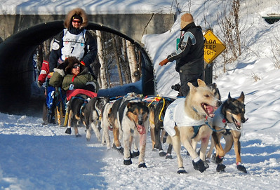 #7 - 2009 Iditarod - Anchorage - Alaska