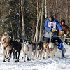 Iditarod - 2009 - Anchorage - Alaska : Iditarod, Dog Shows, Dog Events