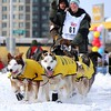 Iditarod - 2010 - Anchorage - Alaska : Iditarod, Dog Shows, Dog Events