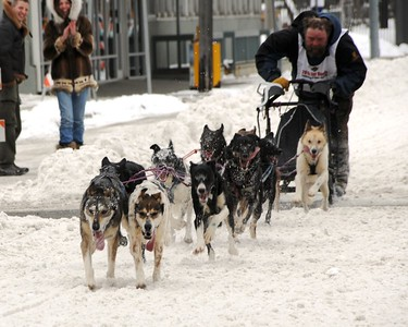Fur Rondy - Dog Races - Anchorage - Alaska