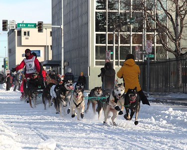 Team 9 - 2011 Iditarod Ceremonial Start - Anchorage - Alaska - USA