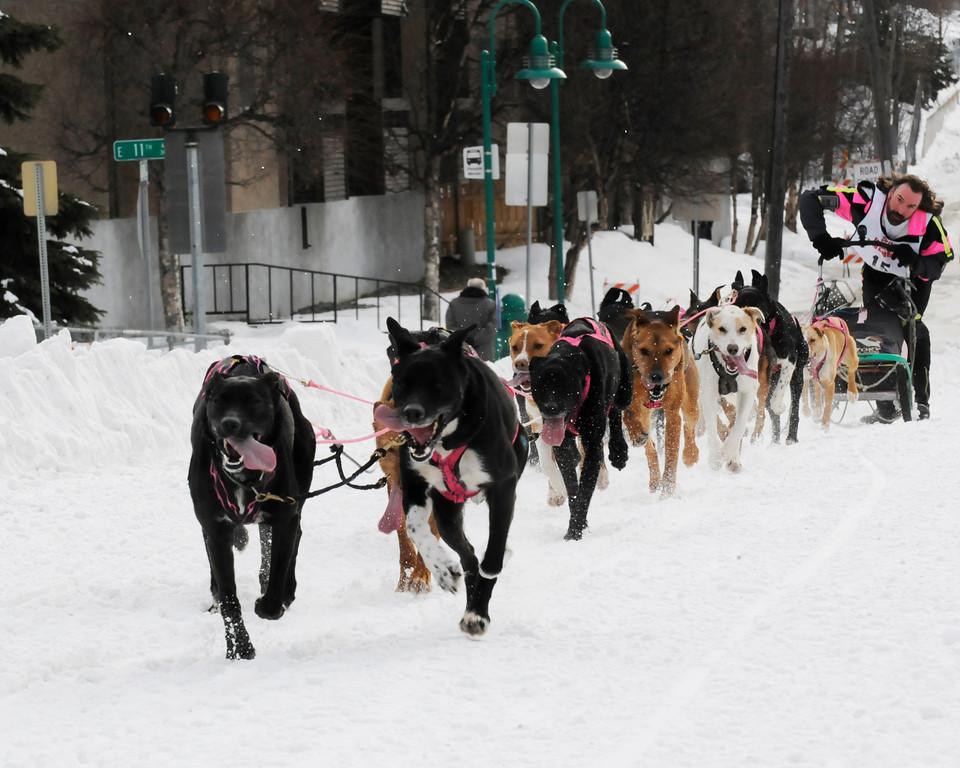 World Championship Sled Dog Races - Fur Rondy 2011 - Anchorage - Alaska - USA