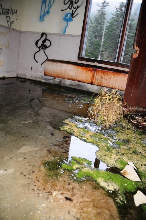 Buckner Building - Grass - Abandoned - Whittier - Alaska - USA