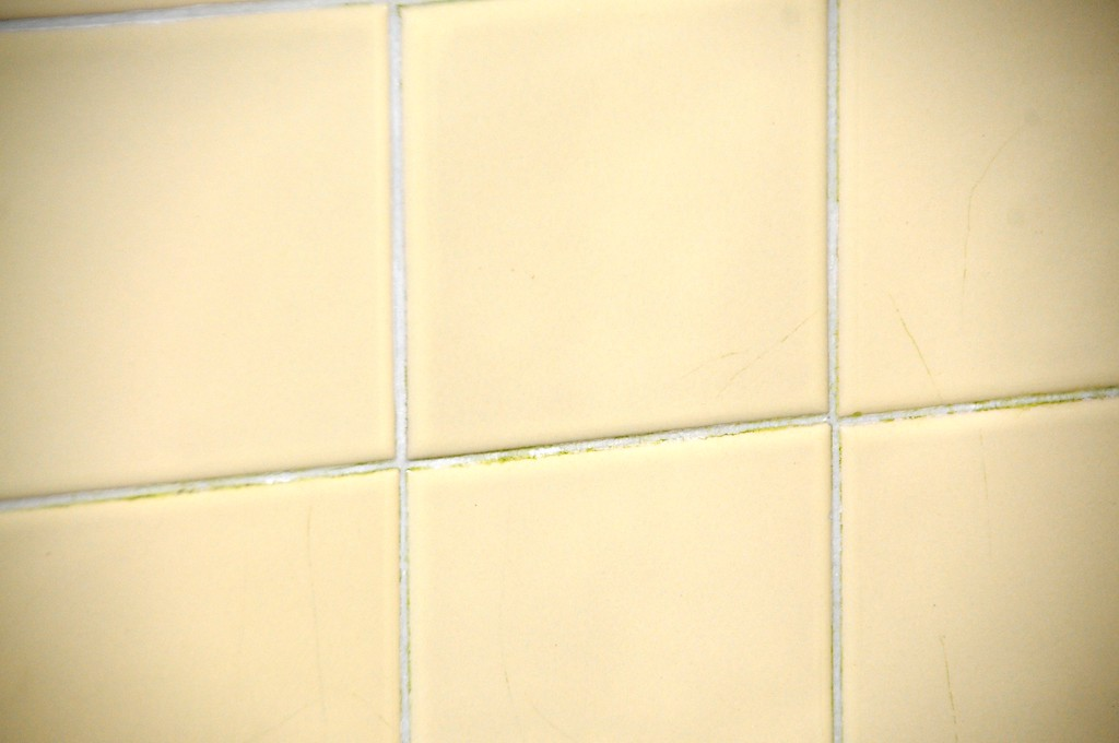 Buckner Building - Tile on walls - Abandoned - Whittier - Alaska - USA