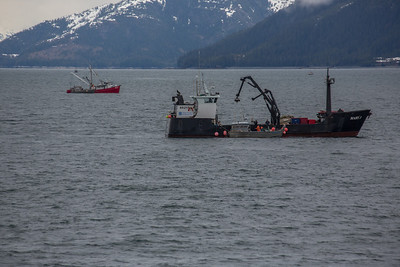 Prince William Sound Fishing Tender