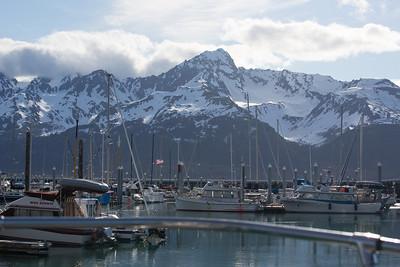 Seward Marina