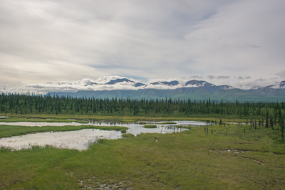 Friday July 21st - Denali National Park-40