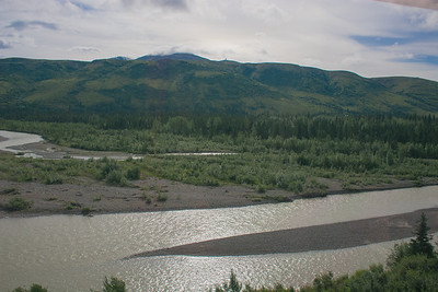 Friday July 21st - Denali National Park-21