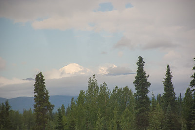 Friday July 21st - Denali National Park-67