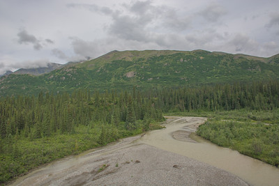 Friday July 21st - Denali National Park-48