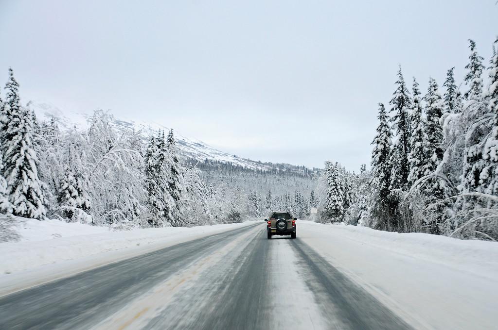 Seward Highway - Turnagain Pass - Kenai Peninsula - Alaska - USA