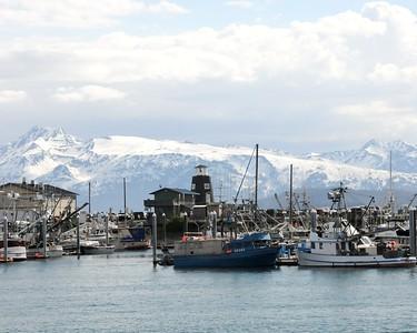Boat Harbor - Homer Spit - Homer - Kenai Peninsula - Alaska - USA