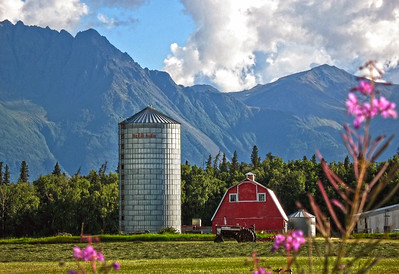 Barn - Building - Architecture - Palmer - Alaska - USA