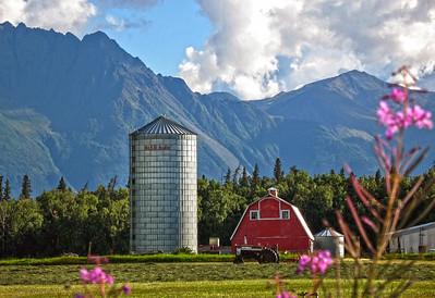 Barn - Building - Architecture - Palmer - Alaska - USA