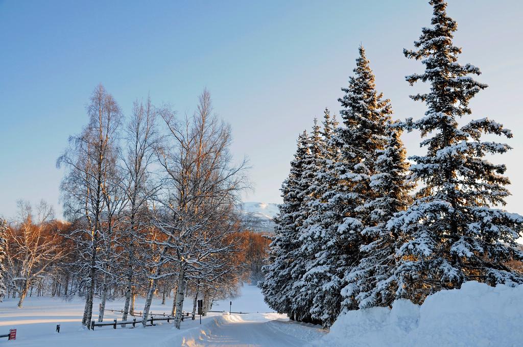Arctic Valley - Alaska Winter - Anchorage - Alaska - USA
