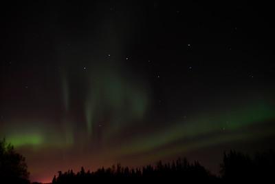 Northern Lights / Aurora - Alaska - USA