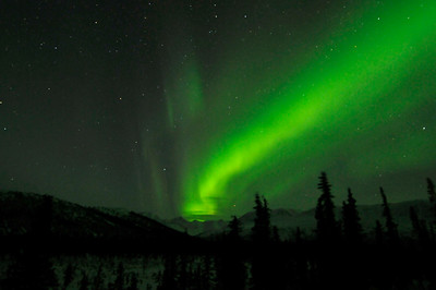 Northern Lights / Aurora - Cantwell - Alaska - USA