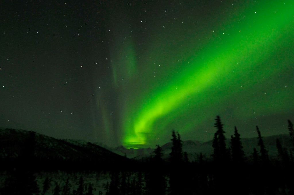 Northern Lights / Aurora - Cantwell - Alaska - USA